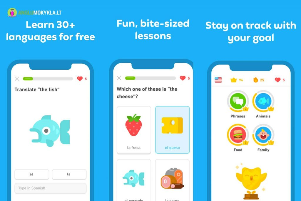 Anglų Kalbos Programėlė Duolingo
