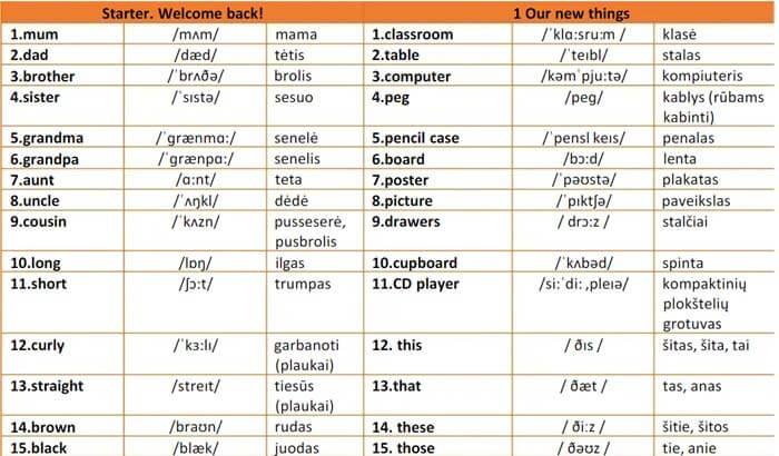 Anglų kalbos žodynas